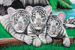 Zoo Animals 240 47b 6 Artwork Micro Fiber Cleaning Cloth