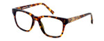 Parkman Handcrafted Eyeglasses Brickma in Tortoise with Coffee ; Made in the USA :: Rx Single Vision