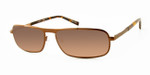 Dale Earnhardt, Jr. 6760 Designer Reading Sunglasses in Brown