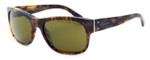 Ralph Lauren Polo Designer Sunglasses - PH4072-5017 in Tortoise with Brown Lens