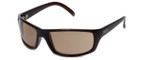 Kenneth Cole 'Reaction' Designer Sunglasses Series KC1072-776 in Brown Frame with Brown Gradient Lens