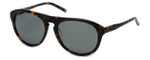 Kenneth Cole Designer Sunglasses KC7114-55N in Tokyo-Tort Frame with Grey Lens