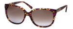 Guess 'Marciano'  Designer Sunglasses Series GM698 in Purple Frame with Brown Gradient Carl Zeiss Lens