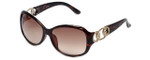 Guess  Designer Sunglasses GUF249 in Tortoise Frame with Amber Gradient Lens