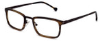 Calabria Elite Designer Eyeglasses CE100 in Brown Tortoise :: Custom Left & Right Lens