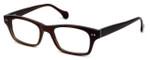 Calabria Elite Designer Eyeglasses CEBH118 in Brown Horn :: Rx Single Vision