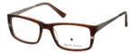 Argyleculture by Russell Simmons Designer Eyeglasses Miles in Tortoise-Brown :: Custom Left & Right Lens