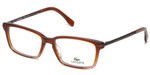 Lacoste Designer Reading Glasses L2720-210 in Brown-Rose 52mm