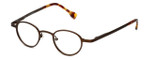 Cinzia Designer Eyeglasses Editorial 02 in Brown 39mm :: Custom Left & Right Lens