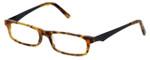 Cinzia Designer Eyeglasses Inside Job C3 in Tortoise 50mm :: Rx Bi Focal