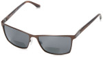 Spine Optics Polarized Bi-Focal Reading Sunglasses SP8001-176 in Brown