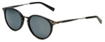 Reptile Designer Polarized Sunglasses Darwin in Black with Flash Mirror Lens