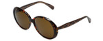Betsey Johnson Designer Sunglasses Betseyville BV109-02 in Espresso with Brown Lens