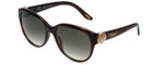 Chopard Designer Sunglasses SCH185S-09XK in Tortoise with Brown-Gradient Lens