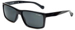 Arnette Designer Sunglasses Biscuit AN4208-4187 in Black & Grey Lens