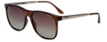 Carrera Tella Polarized Sunglasses in Transparent Brown with Amber Gradient Lens