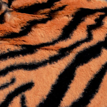 Tiger Animal Print Faux Fur Minky Fabric