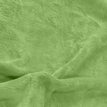 Solid Green Minky Fabric