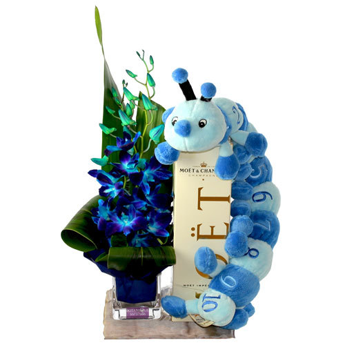 Baby Gift Australia Delivery : Hospital florists gold coast send flowers