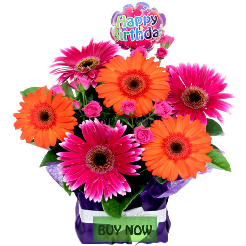 Birthday Flowers In A Box To Gold Coast Delivery Australia