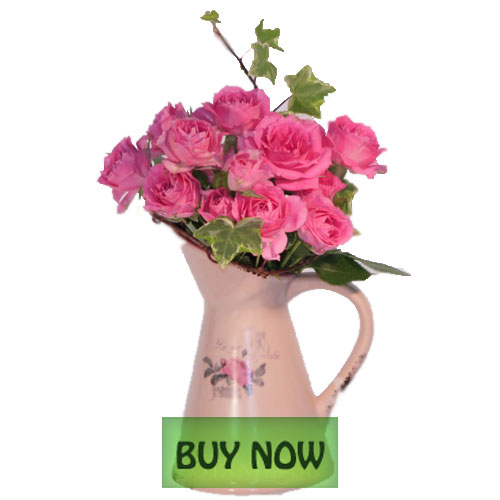Send fresh flowers by post from only £, with free delivery and personal card. View our range of gifts, hampers, balloons, and plants for every occasion.