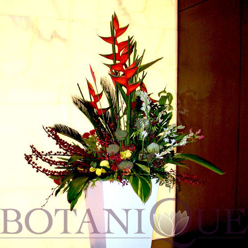 corporate-flowers-gold-coast-australia-entry-display-function.jpg