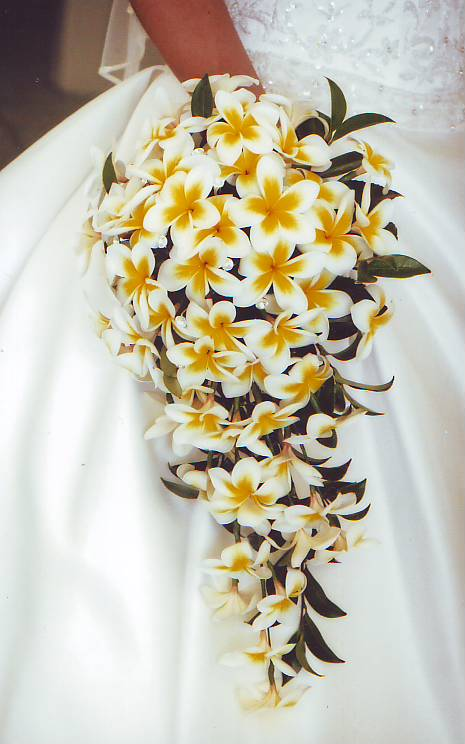Bridal Flowers Gold Coast : Wedding flowers gold coast florist
