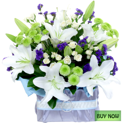 flowers-gold-coast-baby-boy-flowers-online-australia-buy-now.jpg