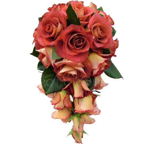 guide for buying wedding flowers botanique florist gold coast