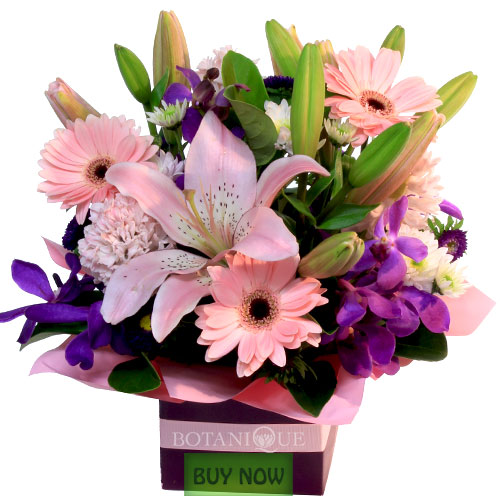 pink-flowers-in-box-gold-coast-buy-now.jpg