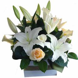 sympathy-flowers-gold-coast-valerie-250x250.jpg