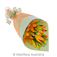 Orange Lily flower delivery Gold Coast Australia