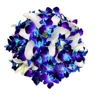 Blue orchid and white lily wedding posy - Medium size