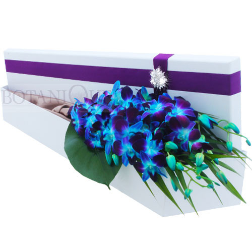 Blue Dyed Singapore Orchids in our signature silk lined Hollywood box with diamanté buckle accent