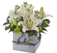 Small mixed box arrangement - Lina - Botanique Flowers Gold Coast