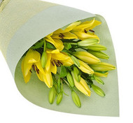 Yellow Asiatic Lily Special