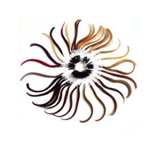 Our Hair Lovers Colour Ring - Hair Extensions and more from The Hair Extension Company