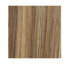 #P18/6 Ashed Blonde and Medium Brown