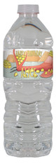 Dragons Love Tacos personalized water bottle labels