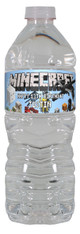Minecraft and Friends personalized water bottle labels