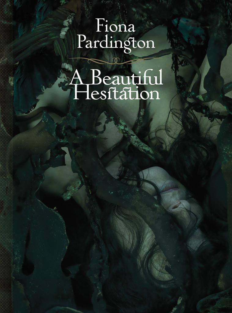 A Beautiful Hesitation
