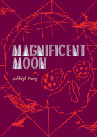 Magnificent Moon