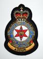 22 Squadron Crest Uniform Patch