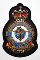 3 Aeromedical Evacuation Squadron Embroidered Crest