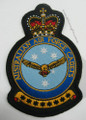 AIR FORCE CADETS CREST