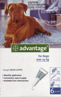Advantage-4pk (Blue) X-Large Dog 55-100 lbs (25-45 kg)