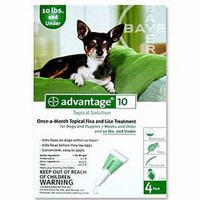 Advantage-4pk (Green) Small Dog 1-10 lbs (0-4.5 kg)