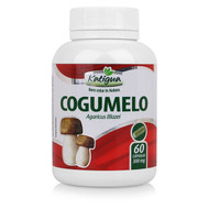 Cogumelo do Sol Capsulas