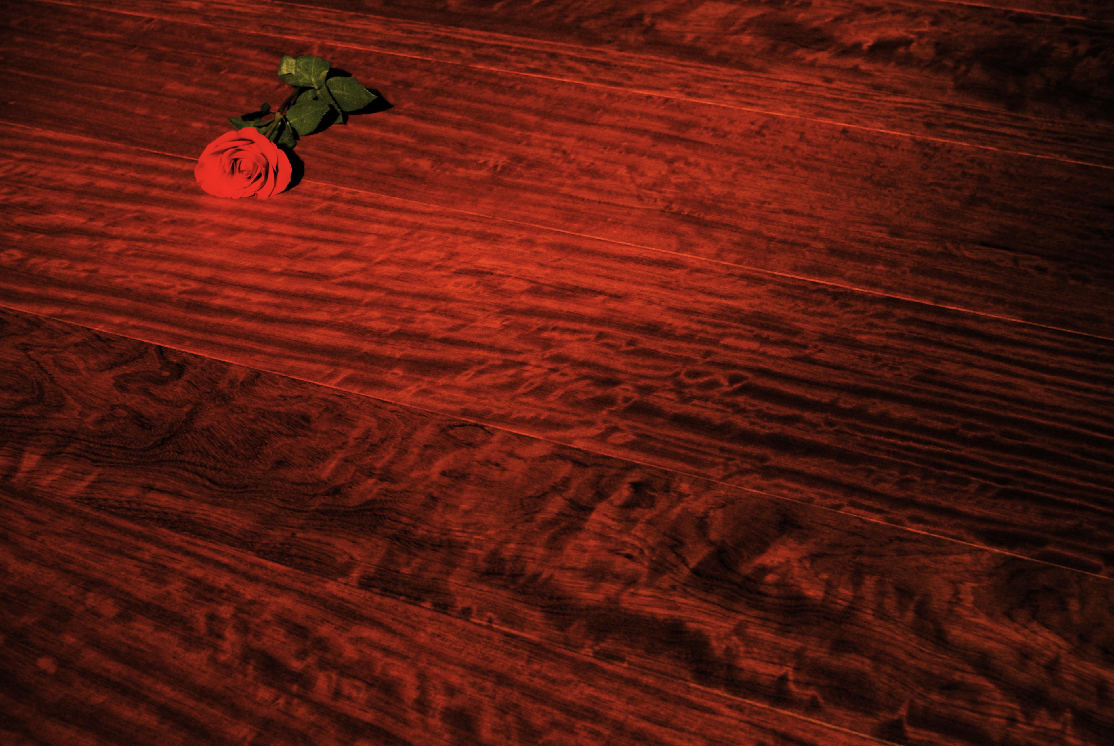 realwideplankflooring.com+bubinga-floor-finished-with-odie-s.jpg