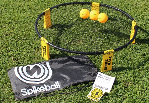 spikeball-recreation-cat-.jpg